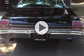 Daddy Dave's Daily Driver Truck vs Built 5 0 MUSTANG On the